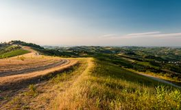 Hügel in Oltrepo Pavese während der goldenen Stunde Stockbilder