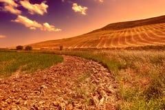 Hügel in Sizilien Stockfotografie