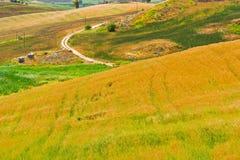 Hügel in Sizilien Lizenzfreie Stockfotos