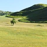 Hügel in Sizilien Lizenzfreies Stockfoto