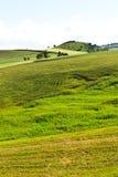 Hügel in Sizilien Stockbilder
