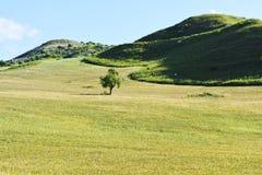 Hügel in Sizilien Stockbild