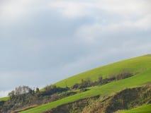 Hügel in Toskana Lizenzfreie Stockfotos