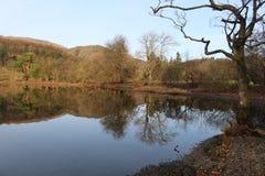 Hügel und Bäume reflektierten sich im ruhigen blauen See stockfotografie