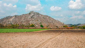 Hügel und Feld Stockbild