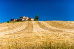 Hügel und Felder in Toskana lizenzfreie stockfotografie