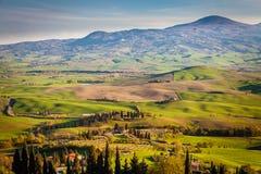Hügel und Felder von Valdorcia Stockfoto