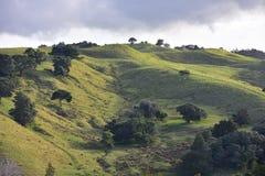 Hügel und Täler mit Ackerland Stockbilder
