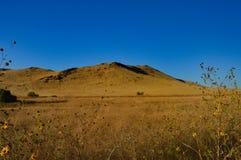 Hügel und Wiesen in Kalifornien stockfoto