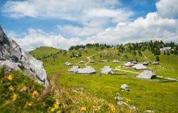 Hügel Velika Planina, Slowenien Lizenzfreies Stockfoto