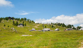 Hügel Velika Planina, Slowenien Stockfotografie