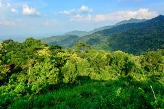 Hügel von Gedangsari Stockbild