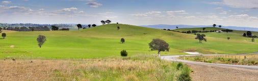 Hügel von Mandurama-Landschaft Stockbilder