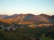 Hügel von Prosecco Stockbilder