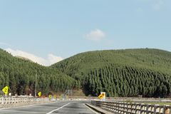 Hügel-Wald und Straße Stockbilder
