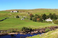 Hügelbauernhof Fluss Swale, Swaledale, North Yorkshire Stockfoto