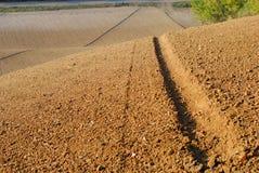 Hügelfeld im Toskana-Ackerland Lizenzfreie Stockbilder