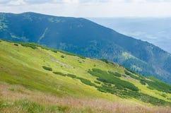 Hügelige Landschaft im Sommer Stockbilder