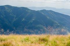 Hügelige Landschaft im Sommer Lizenzfreie Stockfotografie