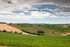 Hügelige Landschaft von Le Marche, Italien Stockbild