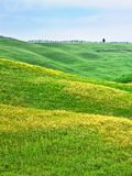 Hügelige Landschaft von Toskana Stockfotografie