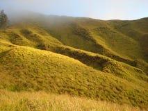 Hügelige Wiese um Berg Rinjani Stockfotografie