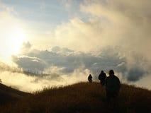 Hügelige Wiese um Berg Rinjani Stockbilder