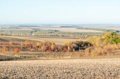 Hügeliges Herbstfeld Lizenzfreies Stockfoto