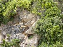Hügelklippe in Indonesien Stockfoto