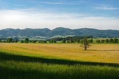 Hügellandschaft Lizenzfreie Stockfotografie