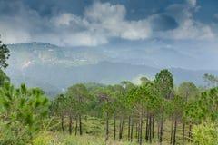 Hügellandschaft Stockfoto