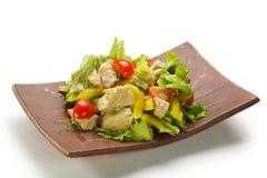 Hühnchen-Brust-Salat Stockfotografie