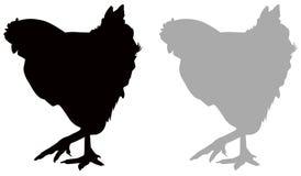 Hühner- oder Hennenschattenbild - inländischer Vogel, Geflügel stock abbildung