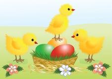 Hühner. Ostern-Karte Lizenzfreie Stockfotografie