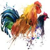 Hühner-und Hahnt-shirt Grafik-, Hühner- und Hahnfamilienillustration mit Spritzenaquarell maserte Hintergrund Illustra Stockbild