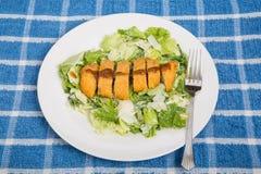 Hühnerbrust und Barbecue-Soße auf Caesar Salad Lizenzfreie Stockbilder