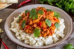 Hühnercurry mit Reis und Koriander Lizenzfreies Stockbild
