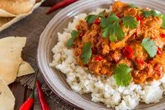 Hühnercurry mit Reis und Koriander Lizenzfreie Stockbilder