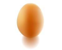 Hühnerei Vektor Abbildung