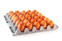 Hühnerei Lizenzfreies Stockbild