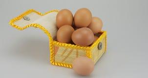 Hühnerei in der KastenZeitspanne stock video