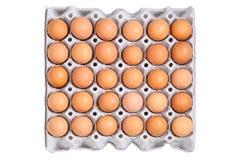 Hühnereien Lizenzfreies Stockbild