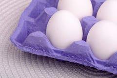Hühnereien in der Eierablage Lizenzfreie Stockfotografie