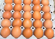 Hühnereien in der Eierablage Stockbild