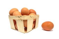 Hühnereien in einem Korb lokalisiert Lizenzfreies Stockbild