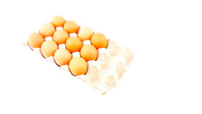Hühnereien gesetzt auf einen langen Behälter Lizenzfreie Stockfotos