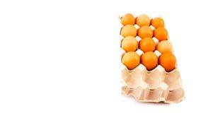 Hühnereien gesetzt auf einen langen Behälter Stockfoto