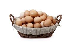 Hühnereien im Korb auf weißem Hintergrund Lizenzfreies Stockfoto