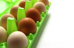 Hühnereien im Oberteil im grünen Behälter Lizenzfreie Stockbilder