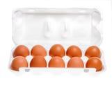 Hühnereien im Pappbehälter Lizenzfreies Stockfoto